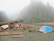 Alza loca a lo largo de las costas y del bosque brumosos hermosos de Vancou imagenes de archivo