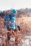 Alza a través de prados en el invierno Fotos de archivo