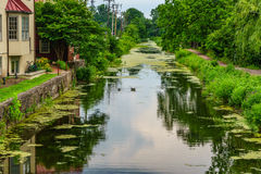 Alzaia del canale del Delaware ed oca, nuova speranza storica, PA fotografia stock libera da diritti