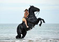 Alzar el caballo Fotos de archivo