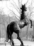 Alzar el caballo Imagenes de archivo