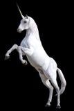 Alzar unicornio Fotos de archivo libres de regalías