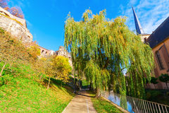 At the Alzette river in Luxembourg City. Footpath at the Alzette river in Luxembourg City Stock Photos