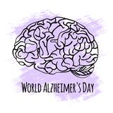 ALZHEIMER DAY World Medicine Event Vector Illustration Banner. ALZHEIMER DAY World Medicine Event Nervous System Anatomy Human Brain Vector Illustration Banner royalty free illustration