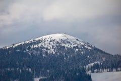 Alzi nella vista austriaca delle alpi, area di Klippitztorl Fotografia Stock Libera da Diritti