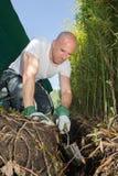 Aménagement bel de jardinier de jeune homme photo libre de droits