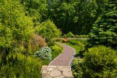 Aménagement dans le jardin Le chemin dans le jardin Beau dos Photos libres de droits