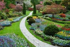 Aménagement de jardin Photo libre de droits
