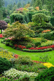 Aménagement de jardin Photo stock