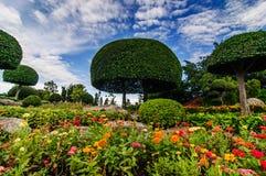 Aménagement des arbres équilibrés en parc public Photographie stock