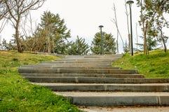 Aménagement en pierre naturel dans le jardin avec des escaliers Photo stock