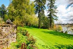 Aménagement près du lac avec le grand mur vert de pelouse et de roche Image stock