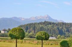 Aménagez en parc autour du village de Rosegg en Autriche dans la terre de photographie stock libre de droits
