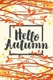 Aménagez en parc avec des feuilles d'automne sur des branches des arbres Images libres de droits