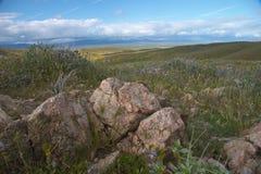 Aménagez en parc avec des roches Photographie stock libre de droits