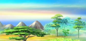 Aménagez en parc avec l'arbre d'acacia en montagnes au lever de soleil Photos libres de droits