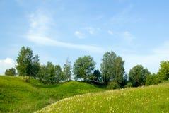 Aménagez en parc avec l'herbe et le ciel bleu 1 d'arbres Image stock