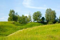 Aménagez en parc avec l'herbe et le ciel bleu 5 d'arbres Photographie stock