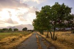 Aménagez en parc avec l'herbe verte, la route et les nuages Images libres de droits