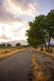 Aménagez en parc avec l'herbe verte, la route et les nuages Photo stock