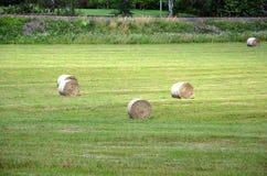 Aménagez en parc avec la photographie de chute de balles de champ et de paille Images stock