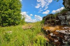 Aménagez en parc avec la pierre moussue et le ciel bleu comme fond Photo libre de droits