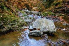 Aménagez en parc avec le canyon et la rivière de Stan de lui de Valea en Roumanie, en Th Photo libre de droits