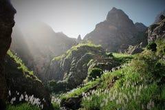 Aménagez en parc avec les montagnes et la végétation en île d'antao de Santa du Cap Vert image libre de droits