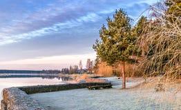 Aménagez en parc avec un vieux pin seul près d'une rivière photographie stock libre de droits