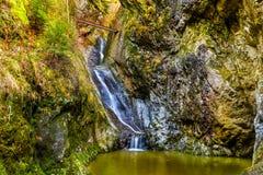 Aménagez en parc avec une cascade dans un canyon, pendant l'automne Image stock