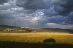 Aménagez en parc avec une ombre de voiture et un ciel orageux photographie stock