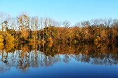 aménagez en parc dans des couleurs d'automne avec des arbres sur le lac ou la rivière Images libres de droits