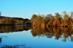 aménagez en parc dans des couleurs d'automne avec des arbres sur le lac ou la rivière Images stock
