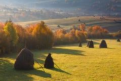 Aménagez en parc dans les meules de foin de lumière du soleil sur le pré de montagne d'automne Photo libre de droits