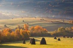Aménagez en parc dans les meules de foin de lumière du soleil sur le pré de montagne d'automne Images stock
