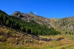 Aménagez en parc dans les senales val, Tyrol du sud Italie Photos libres de droits