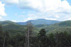 Aménagez en parc de Rushnov aux montagnes - un endroit roumain photos libres de droits