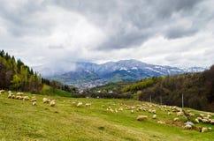 Aménagez en parc du village de Prundu Bargaului, comté de Bistrita Nasaud, la Transylvanie Photos libres de droits