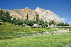 Aménagez en parc près de Mulbek, monastère de Mulbek également peut être vu au dessus, Kargil, Ladakh-Inde Photographie stock