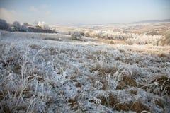 aménagez l'hiver en parc Images stock