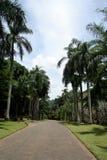 Aménagez l'image en parc à la montagne, avec un ciel bleu et des nuages blancs Photo stock