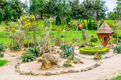 Aménagez la conception en parc avec les cactus, le sable, les pierres et le housei en bois Photo stock