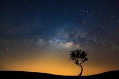 Aménagez la silhouette en parc de l'arbre avec la galaxie de manière laiteuse et le dus de l'espace photo stock