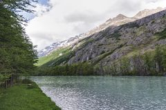 Aménagez la vue en parc à l'intérieur de la forêt en EL Chalten Patagonia, Argentine image libre de droits