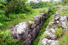 Aménagez la vue en parc d'herbe dans la roche cassant Phu Hin Rong Kla Phitsanul Photo libre de droits