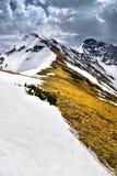 Aménagez la vue en parc de la montagne occidentale couverte de neige de Tatra Image stock