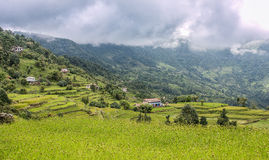 Aménagez la vue en parc des terrasses de riz en vallée de Katmandou, Népal photographie stock