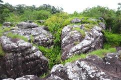 Aménagez la vue en parc sur le phitsanulok de kla de rong de hin de phu de montagne Images stock