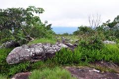 Aménagez la vue en parc sur le phitsanulok de kla de rong de hin de phu de montagne Photo libre de droits