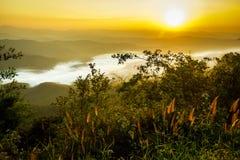 aménagez le coucher du soleil en parc orange de montagne avec la brume et l'herbe blanches Photos stock